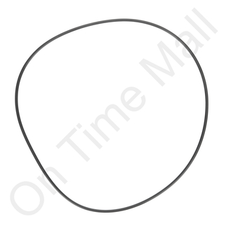 Armstrong A21374 O-Ring for Steam Generator