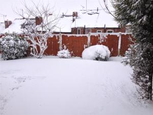 Deep drifts on the garden