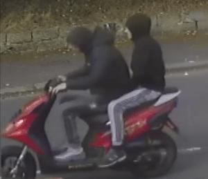No Helmets, No License Plate