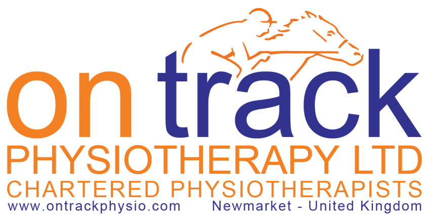 chartered physiotherapists specialising in veterinary physiotherapy