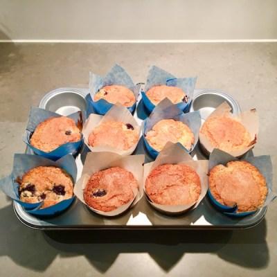 blueberry muffins4