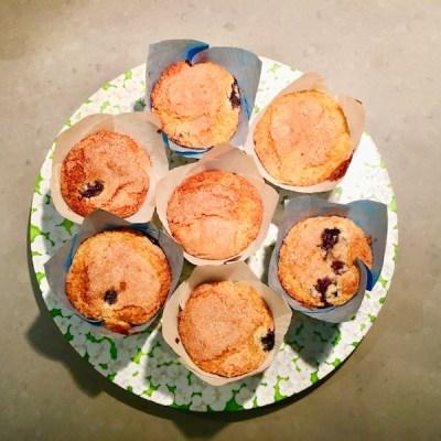 blueberry muffins5