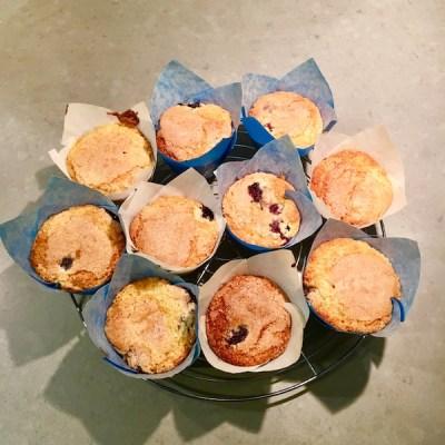 blueberry muffins6