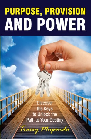 Purpose Provision and Power