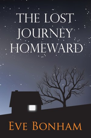 The Lost Journey Homeward_3D