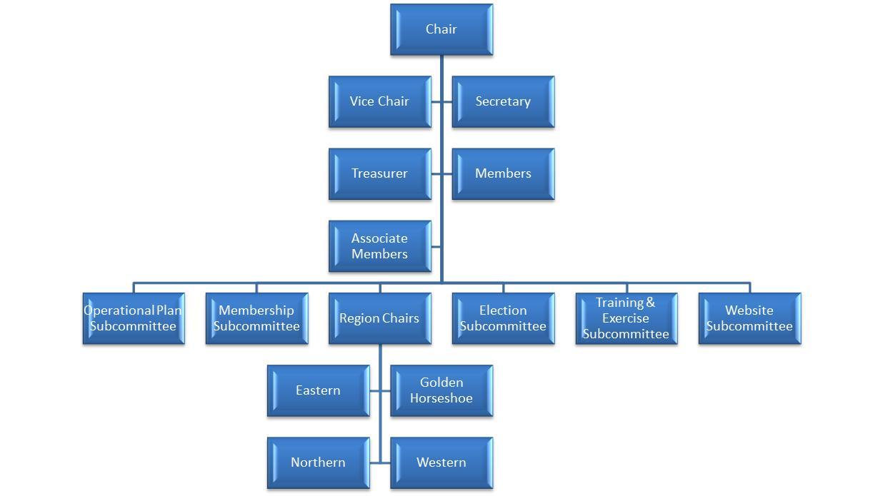 Home  Steering Committee