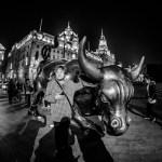 Shanghai Bull China