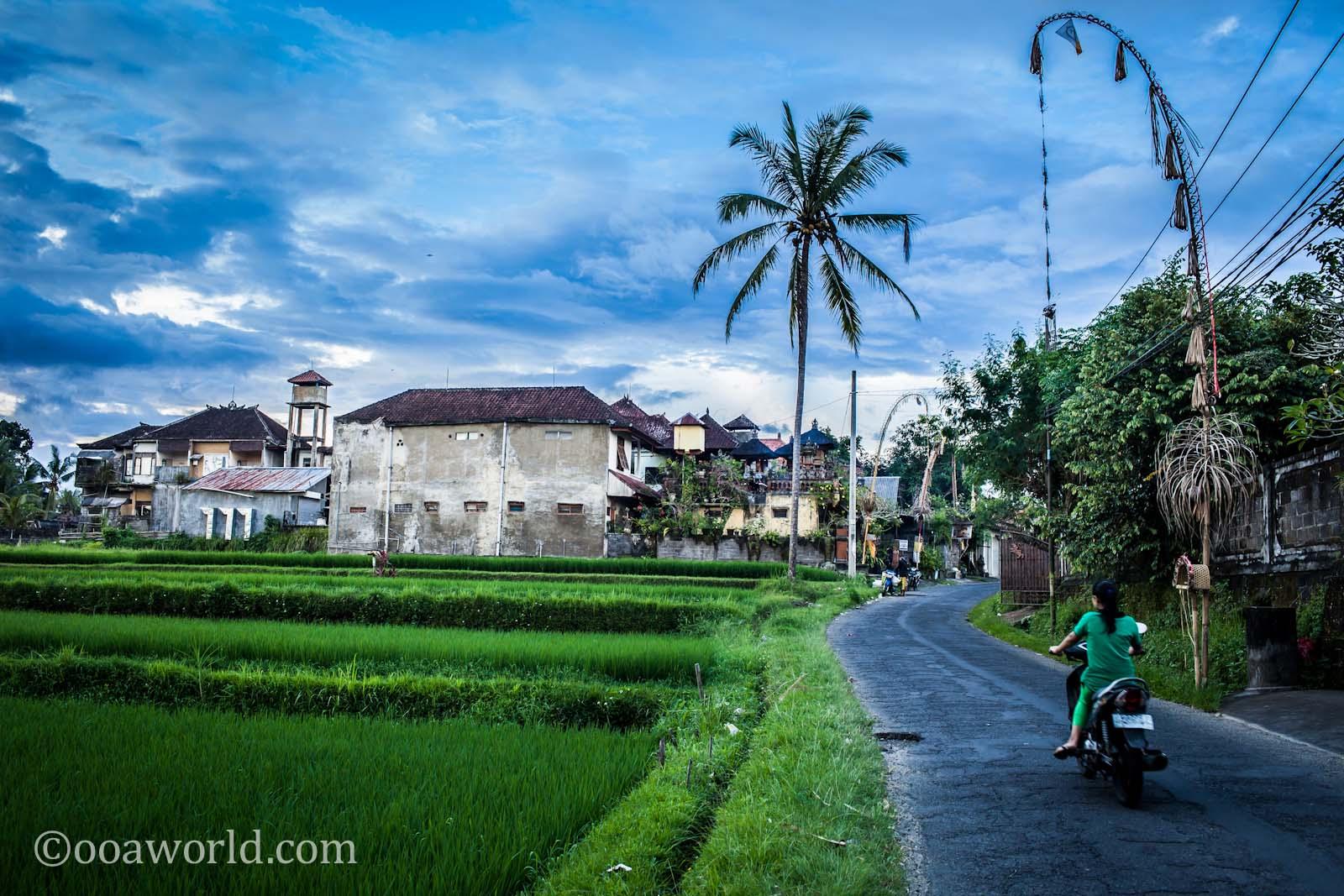 Bali Living Indonesia photo Ooaworld