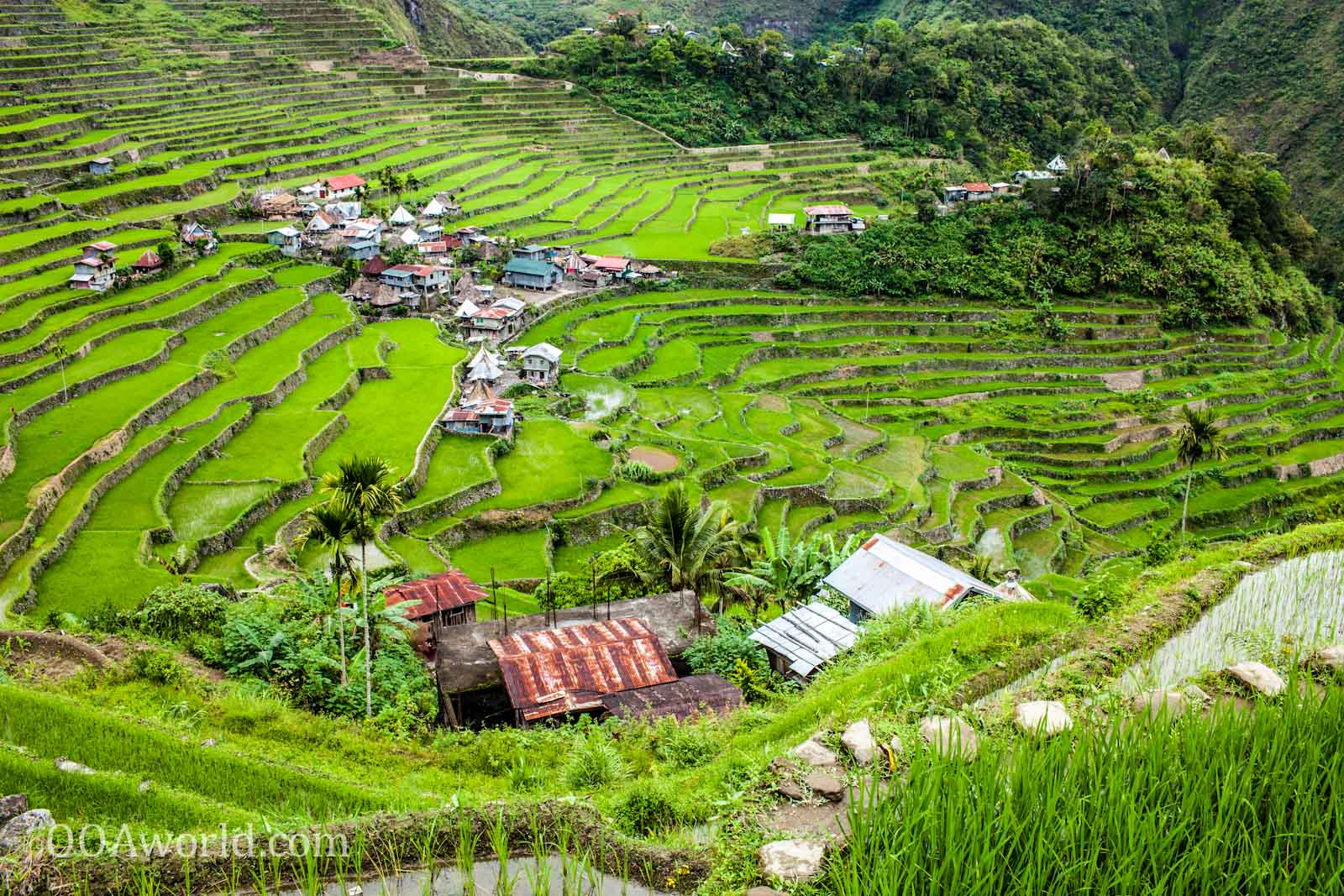 Photo Batad Rice Terraces Viewpoint Ooaworld