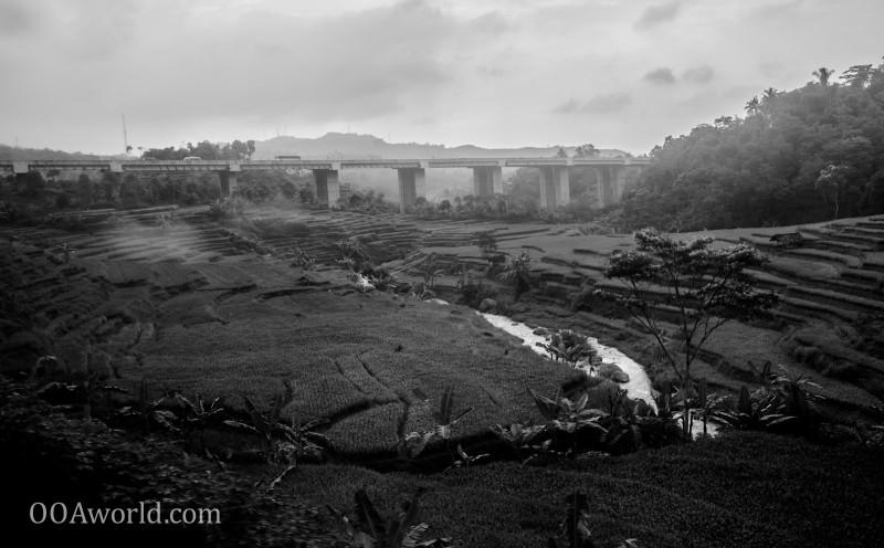 Bandung Rice Terraces Indonesia Photo Ooaworld