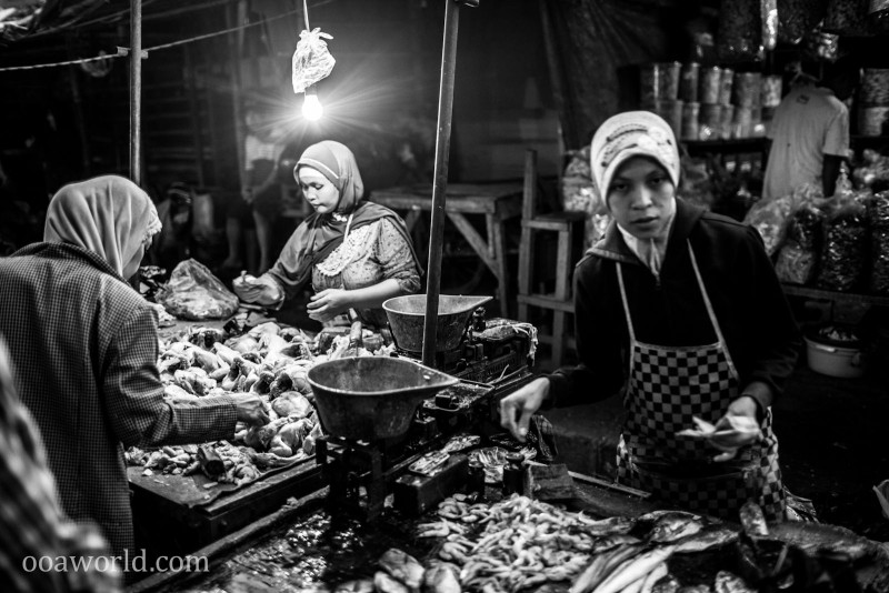 Morning Market Chicken Bandung Indonesia Photo Ooaworld