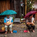 Feeding Monks Laos Photo Ooaworld