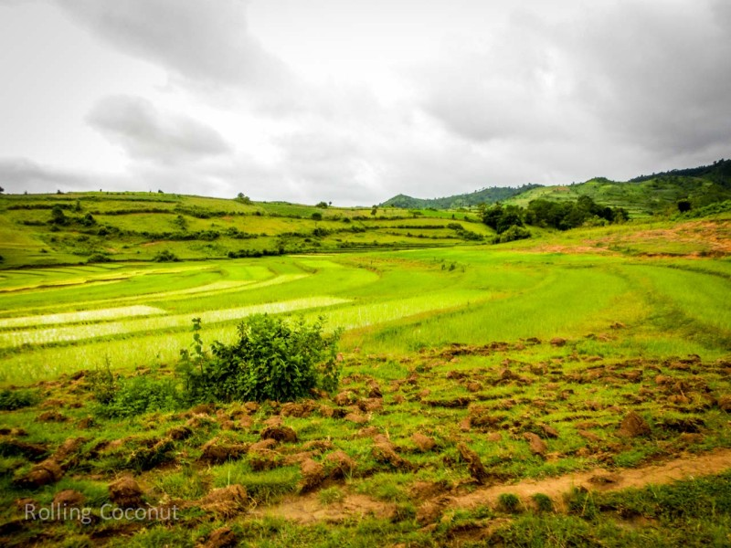Kalaw Inle Lake Trek Myanmar Rice Fields Photo Ooaworld