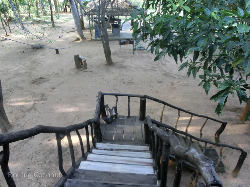 Habarana Tree House Stairs Sri Lanka ooaworld Rolling Coconut Photo Ooaworld