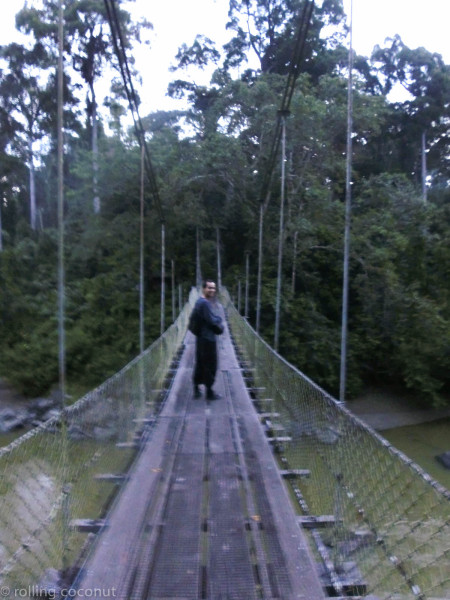 Bridge at Danum Valley photo ooaworld Rolling Coconut