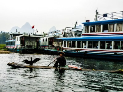 Cormorant fisher near Yangshuo