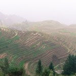 longsheng rice terraces china ooaworld rolling coconut