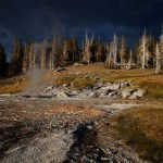 Yellowstone Park, bleached landscape