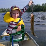 Lucas,6, got up early one morning to go fishing at the end of August in with his Dad in their canoe. Lucas caught this nice pike.