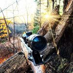 Enjoying the tranquility of the outdoors. Sometimes the most successful shots come from your camera rather than your gun. The sun beams illuminating the crisp fall colours make for a worthwhile day of hunting even if you don't bring home a trophy at the end of the day.