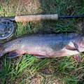 Haliburton fishing