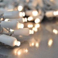 LED Warm White String Lights - Twinkling Effect