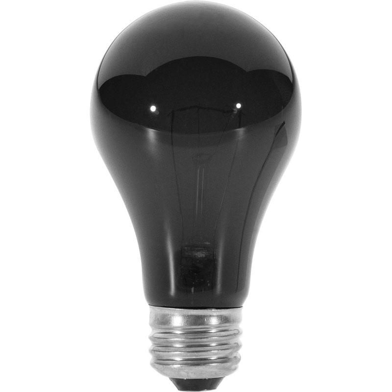 Medium Light Bulb