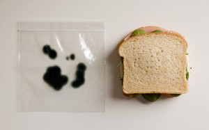 Bag with Sandwich