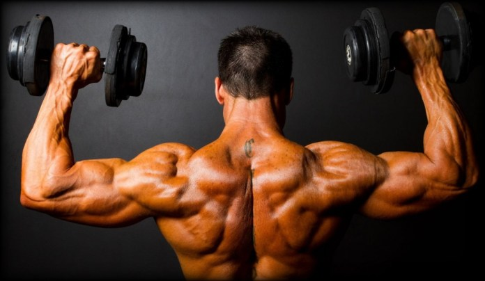 fadiga muscular