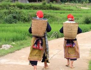 porteurs asiatiques