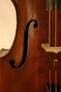 violoncelle-closeup_19-100176