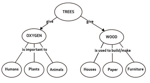 TI-AIE: Concept mapping: water: 1 Developing concept maps