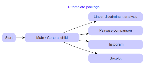 R template package