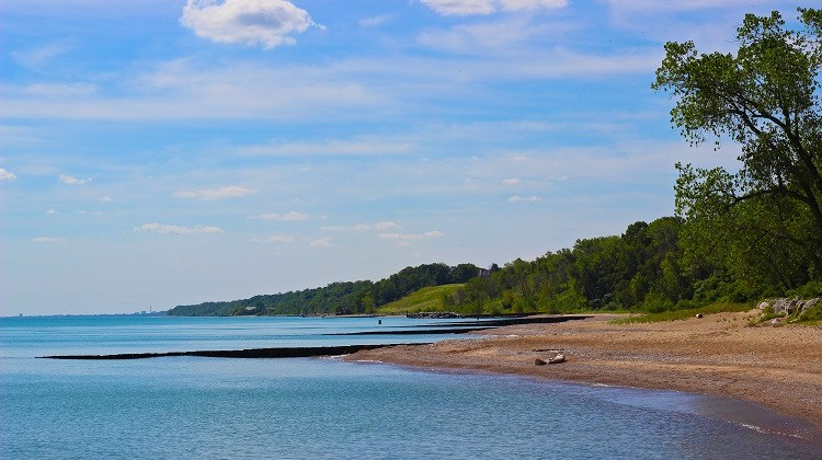 Have You Discovered The Openlands Lakeshore Preserve Openlands