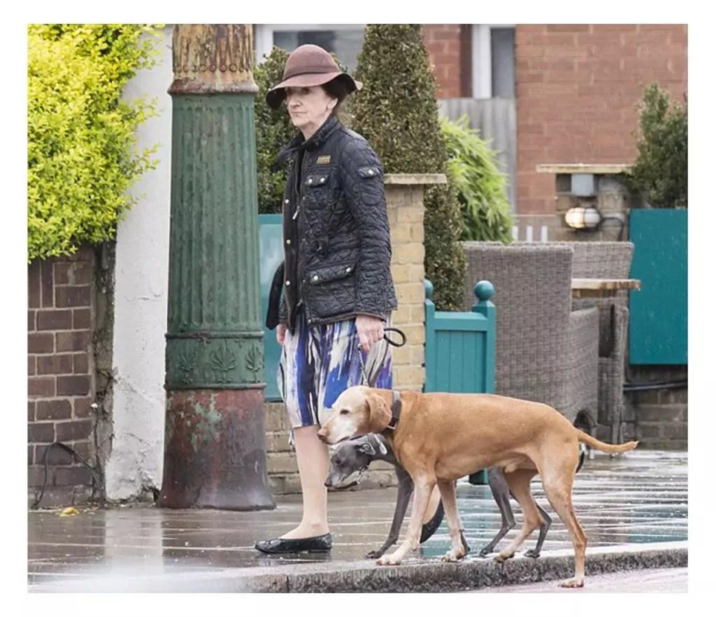 Anne Craig and her psychic dogz.jpg