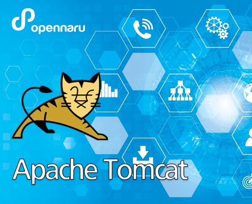 Apache Tomcat Link
