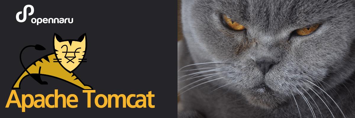 Apache Tomcat 소개