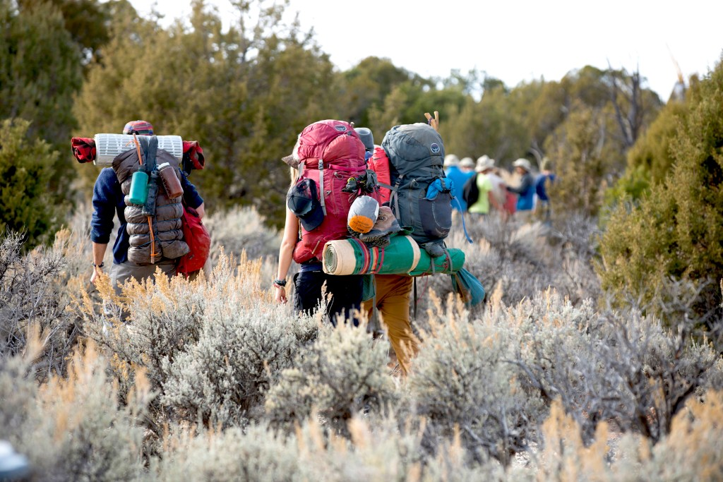 A group of Open Sky Wilderness Therapy students wearing backpacks walk through a field of sage brush.