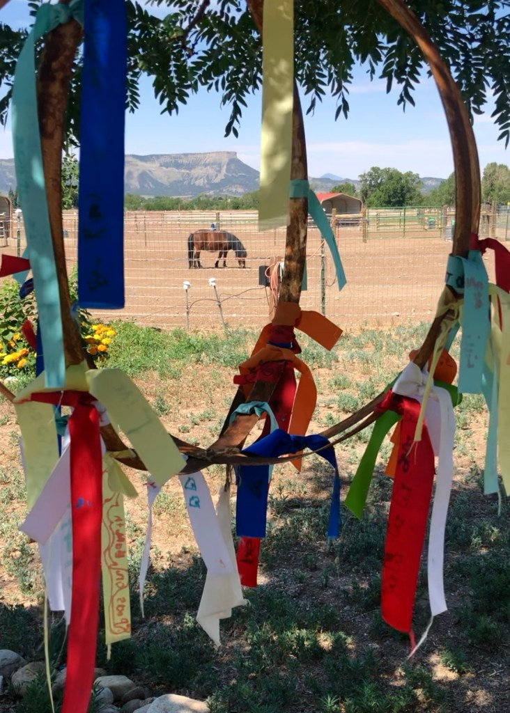 A miniature Shetland pony grazes in paddock behind a colorful hoop of ribbons.