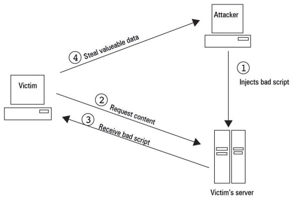 Visualisation of persistent XSS vulnerability