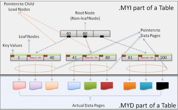 A B-tree index in MyISAM