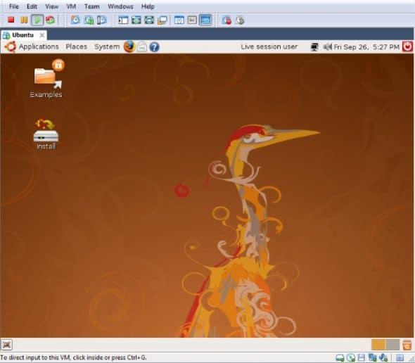 VMware Player running Ubuntu as guest OS