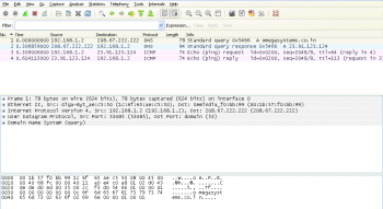 Screenshot2 - DNS Query and ICMP Echo Request