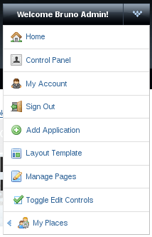 Figure 2: Admin menu for adding portlet application