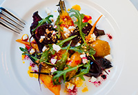 Vegan & Vegetarian Friendly Dining Options