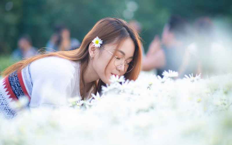 satisfied young woman smelling chamomile flowers on spring day