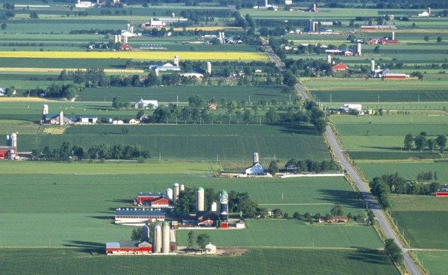 Home Ontario Pesticide Education Program En