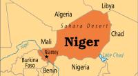 I migranti sono un pretesto per militarizzare lo spazio del Sahel. In effetti, da tempo immemorabile, questa area di raccordo col deserto del Sahara è stata un luogo di scambi commerciali e di migrazioni umane. Fino ai nostri giorni l'Africa occidentale è tra le zone del mondo a più alta percentuale di mobilità umana. La maggior parte degli spostamenti si realizza peraltro all'interno dell'area citata. Una minima parte dei migranti si avventura verso il nord Africa e una parte ancora più ridotta cerca di transitare in Europa. La guerra contro i migranti non è cominciata oggi. Uno sguardo anche […]