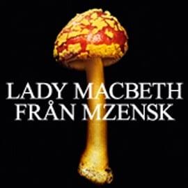 Lady Macbeth från Mzensk - synopsis