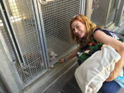 Volunteer putting blankets inside cages at behind the scenes shelter tour.